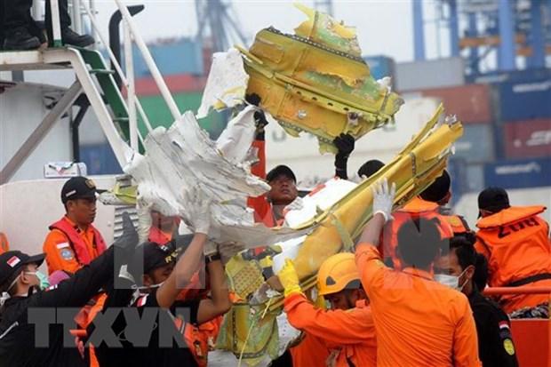 印尼狮航空难遇难者身份鉴别工作结束 125人身份确认 hinh anh 1
