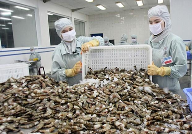 加拿大是越南富有潜力的虾类出口市场 hinh anh 1
