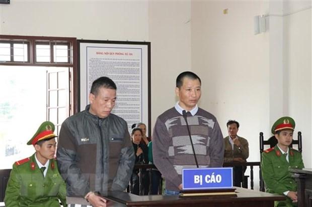 """和平省人民法院以""""非法贩卖和运输毒品""""罪对两名被告人进行判处 hinh anh 1"""
