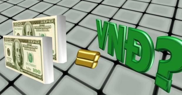 27日越盾兑美元汇率和英镑汇率涨跌互现 hinh anh 1