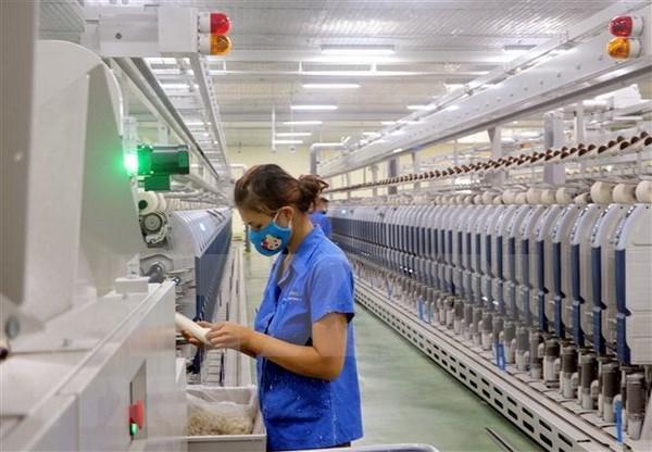 越南公布纺织行业风险评估工具和解决方案 hinh anh 1