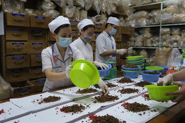 韩越加强传统医学领域研究与合作 hinh anh 1