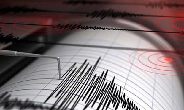印度尼西亚塔宁巴尔群岛海域发生6.5级地震 hinh anh 1