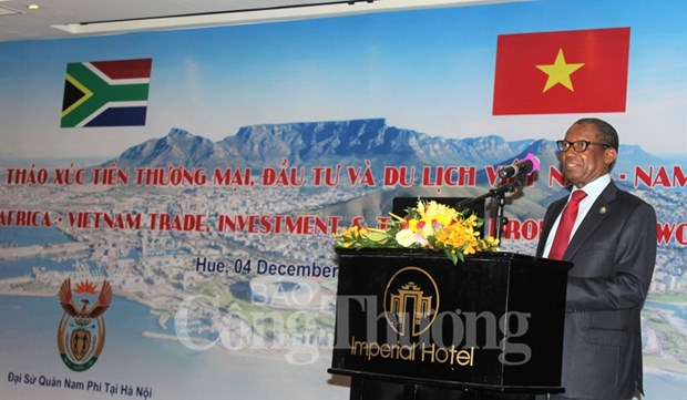 越南与南非力争2019年双边贸易额可达20亿美元 hinh anh 2