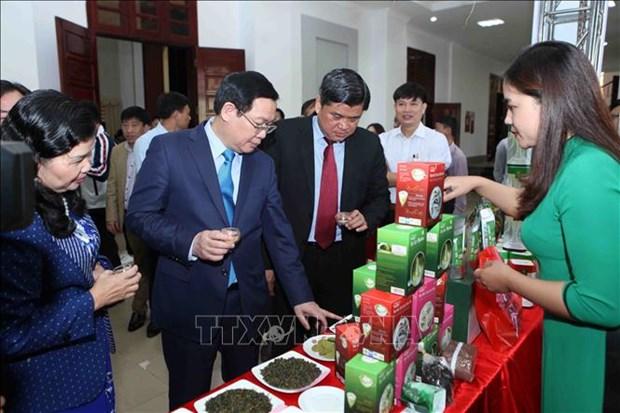 王廷惠副总理:乡村旅游发展中应关注社区利益 hinh anh 2