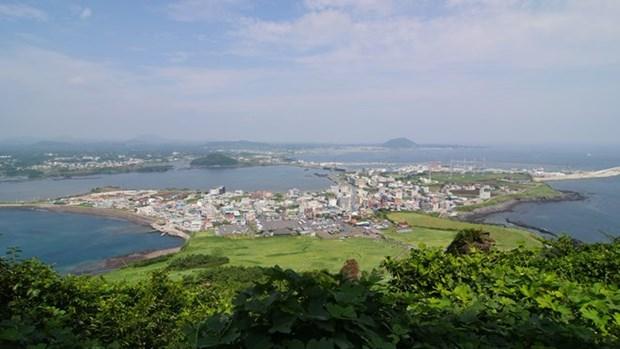 越南欢迎韩国对越南公民实施新签证政策 hinh anh 1