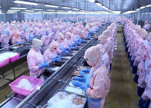 越南虾类产业充分利用深加工优势 hinh anh 1