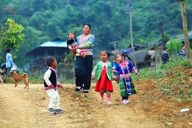 越南政府副总理范平明: 越南为保障和促进人权作出不懈努力 hinh anh 1