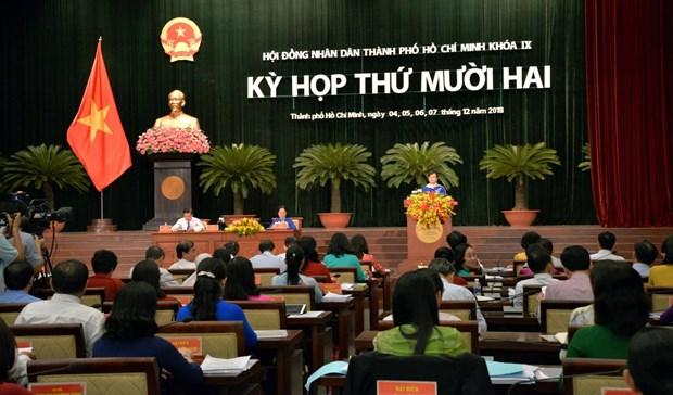 胡志明市继续多措并举 有效实施2019年各项目标任务 hinh anh 1