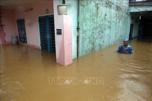 洪水给中部和中部以南地区各省造成严重损失 hinh anh 2