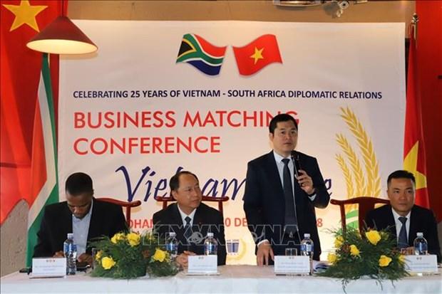 南非——越南大米进军非洲市场的窗口 hinh anh 2