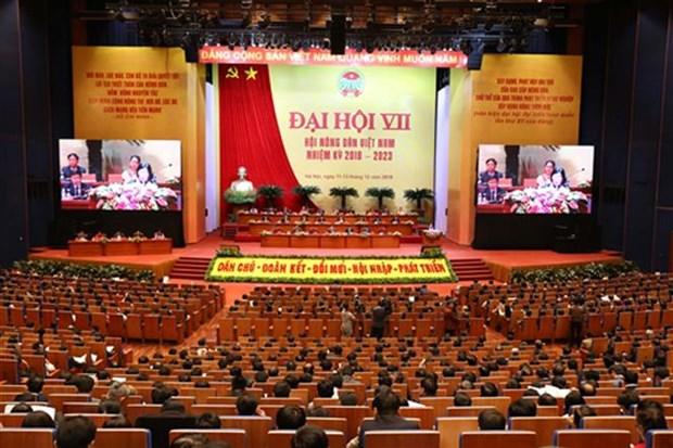 999名代表出席第七届越南农民协会全国代表大会 hinh anh 2