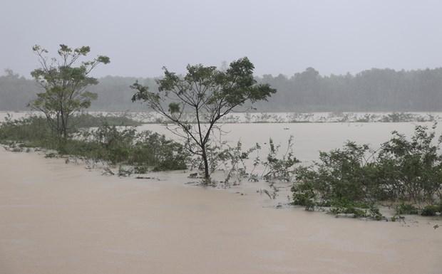 越南中部洪灾致6人死伤失踪,当地经济损失严重 hinh anh 1