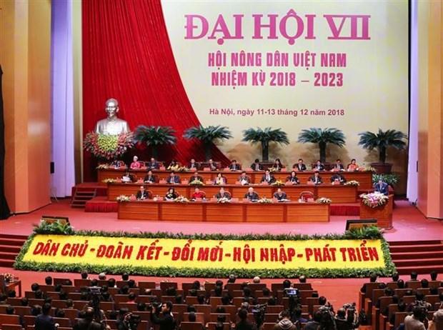 第七届越南农民协会全国代表大会隆重开幕 hinh anh 2