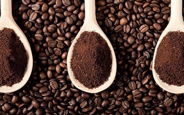 越南经加工咖啡出口呈现新亮点 hinh anh 2