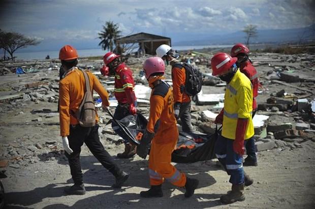 德国为印尼灾区重建援助2500万欧元 hinh anh 1