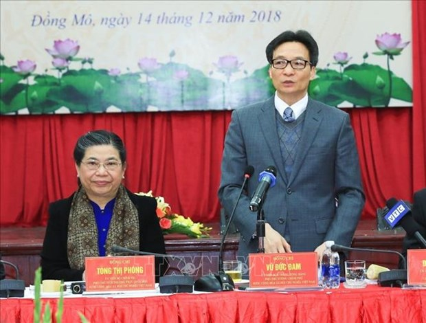 保护和发扬越南少数民族文化价值 hinh anh 2
