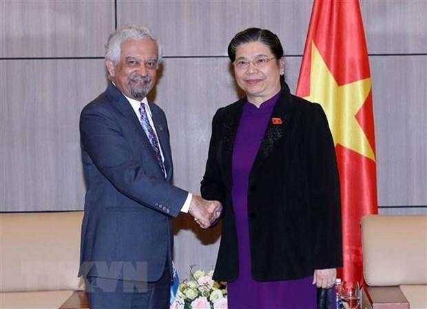 越南国会副主席丛氏放会见联合国驻越协调员 hinh anh 1