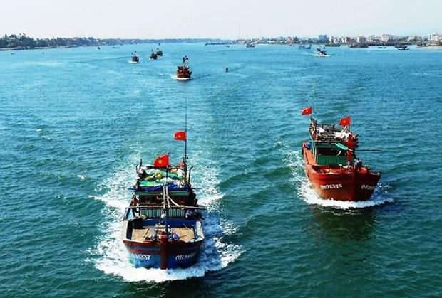 """消除越南渔业""""黄牌""""警告:打造负责任渔业的良机 hinh anh 1"""