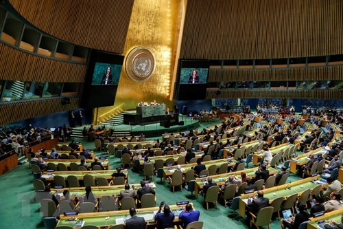 越南首次当选联合国国际贸易法委员会成员 hinh anh 1