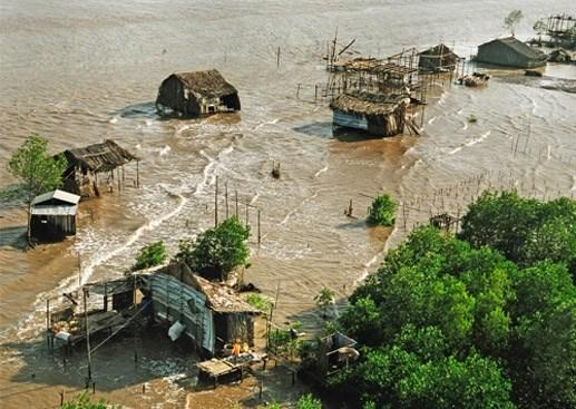 增强越南沿海地区弱势群体的气候变化抵御能力 hinh anh 1