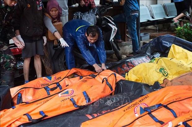 印尼海啸:伤亡人数继续增加 hinh anh 1