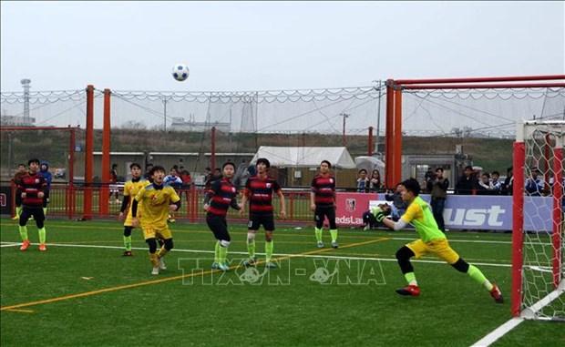 足球成为旅居海外越南人心系祖国的桥梁 hinh anh 1