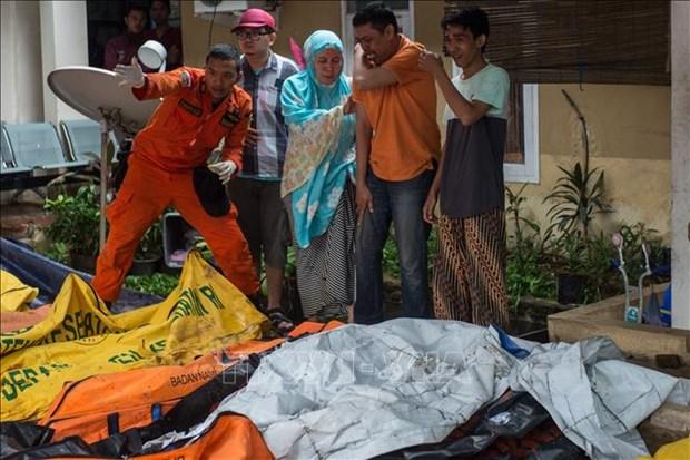 越南领导人就印尼万丹省遭海啸袭击向印尼领导人致慰问电 hinh anh 2