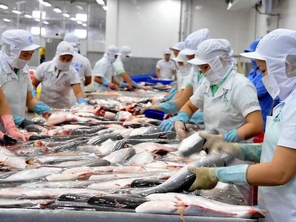 2018年越南水产品出口额达90亿美元 hinh anh 2