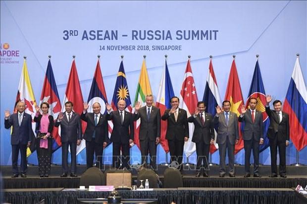 东盟与俄罗斯促进数字技术领域的合作 hinh anh 1