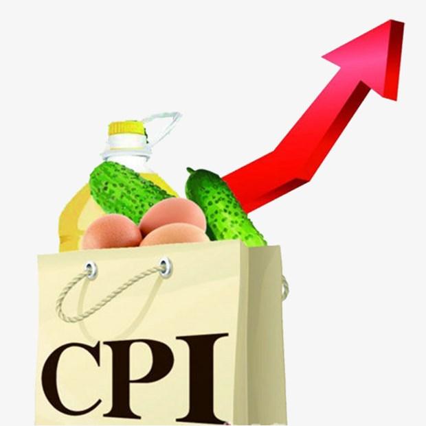 2018年全年居民消费价格指数平均上涨3.54% hinh anh 1