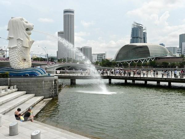 今年11月新加坡工业产品产量超出预测 hinh anh 1