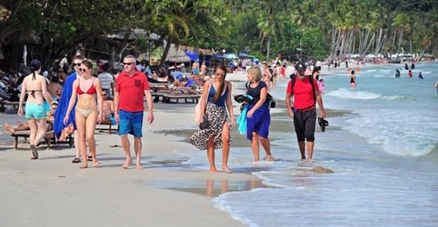 2019年越南旅游业力争接待国际游客1800万人次 hinh anh 1