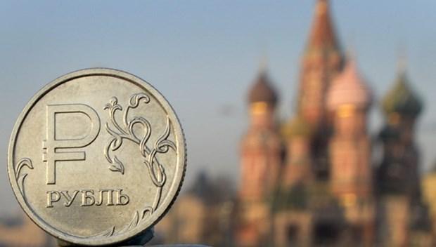 越南是俄罗斯在东南亚的主要贸易伙伴 hinh anh 1