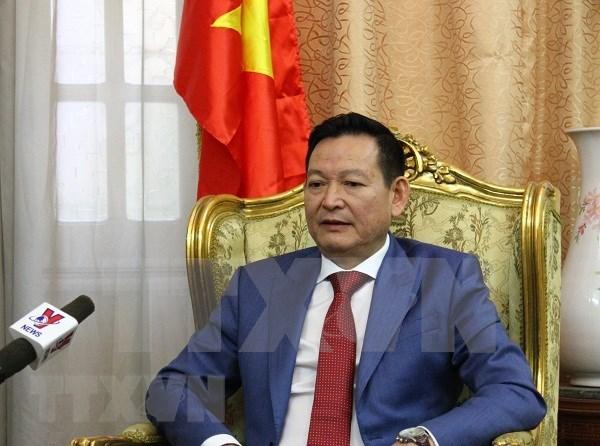 造成三名越南游客死亡的埃及爆炸袭击事件:越南驻埃及大使提供进一步的消息 hinh anh 1