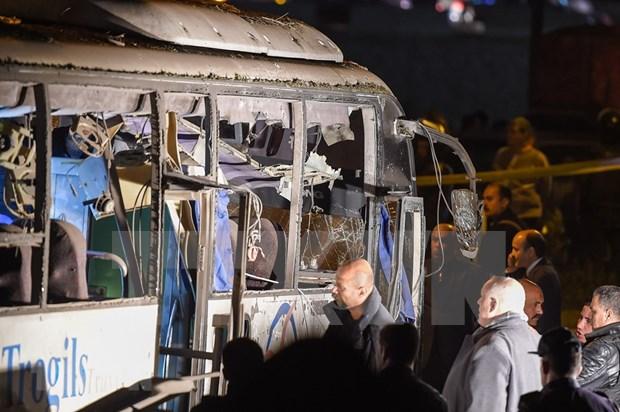 造成三名越南游客死亡的埃及爆炸袭击事件:越南驻埃及大使提供进一步的消息 hinh anh 2