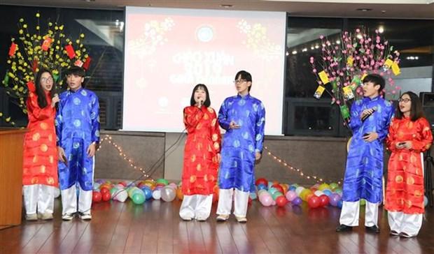 海外越南人欢庆2019新年 hinh anh 2