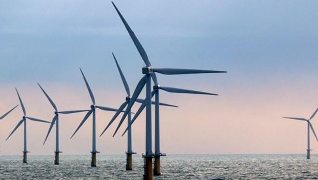 鸡格海上风电项目:越南经济的新突破口 hinh anh 1