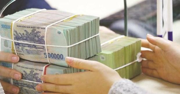 2018年越南国库发行165.8万亿越盾的政府债券 hinh anh 1