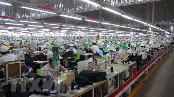 2019年春节平阳省企业用工需求量大幅增加 hinh anh 1