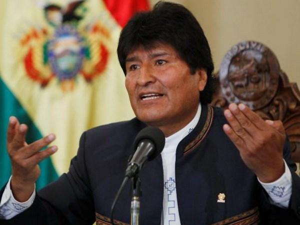 玻利维亚总统:希望扩展越玻经贸合作 hinh anh 1