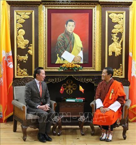 促进越南与不丹合作关系务实平稳发展 hinh anh 1