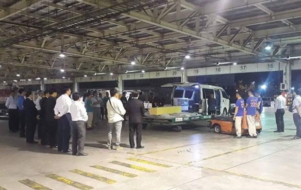 越南游客在埃及遭袭事件:三名遇难者遗体今日回到越南 hinh anh 1