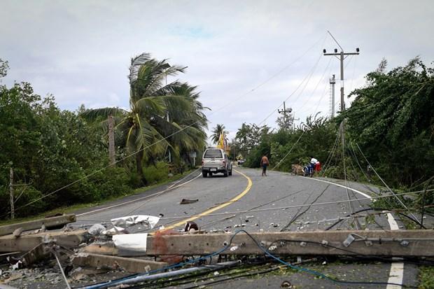 """台风""""帕布""""登录泰国 至少5人死亡 hinh anh 1"""