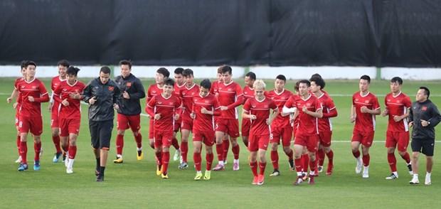越南连续18场不败创纪录 首次跻身国际足联世界排名TOP100 hinh anh 1