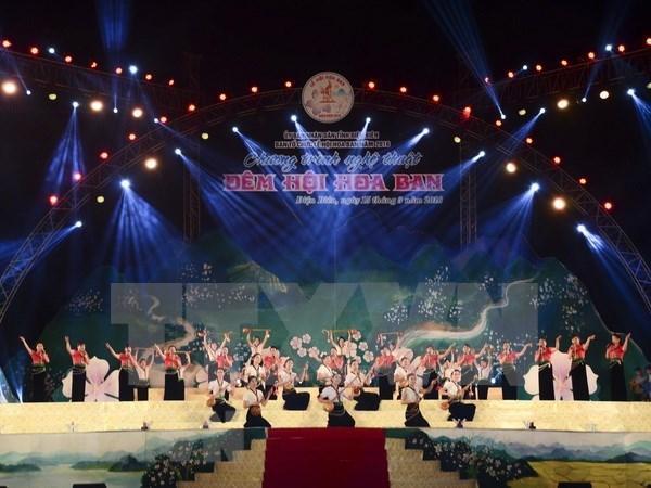 2019年奠边省羊蹄甲花节将于3月举行 hinh anh 2