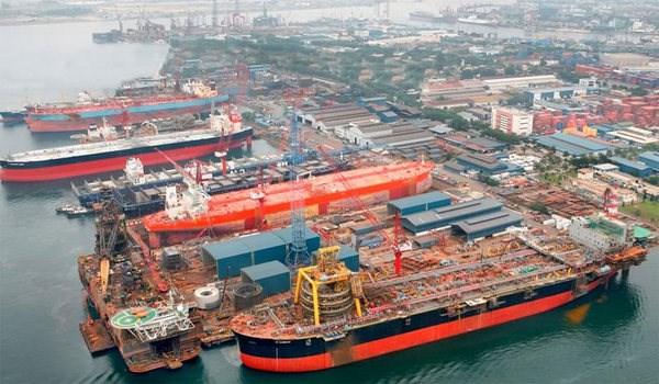 越南集装箱海运市场发展潜力巨大 hinh anh 1
