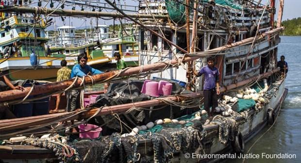 """泰国脱离欧盟""""预备非法捕鱼国""""黑名单 hinh anh 1"""
