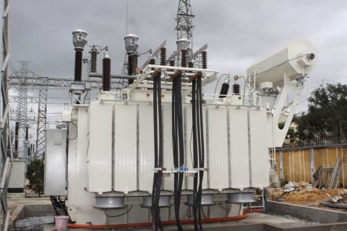 越南国家电力传输总公司努力加强国际合作 hinh anh 1