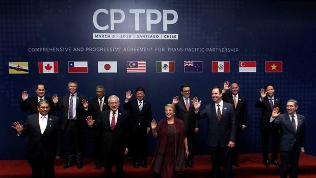 越南加入CPTPP后要求工会组织改进其工作 hinh anh 1
